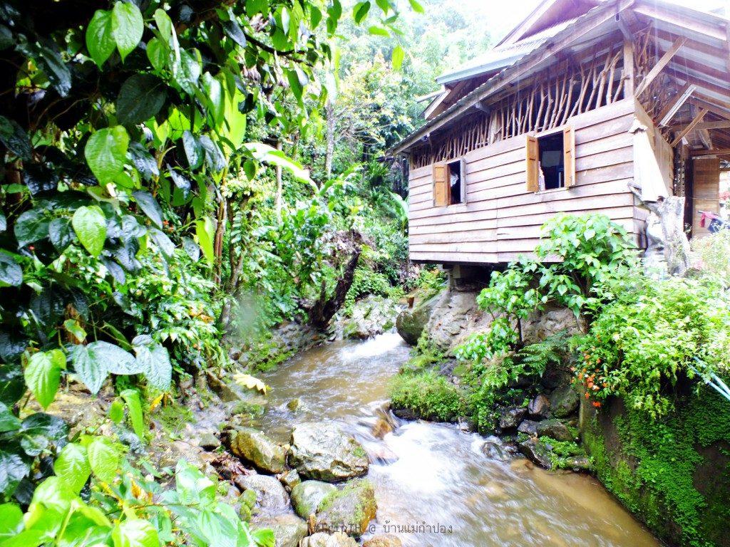 หมู่บ้านแม่กำปอง (4)