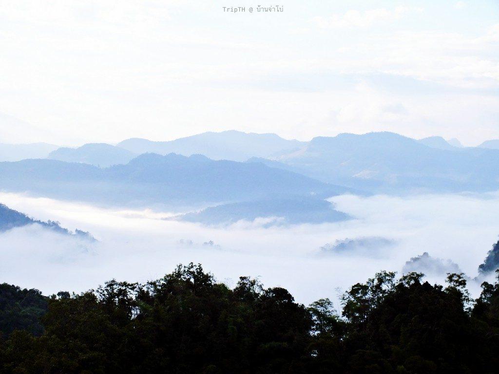 ภูผาหมอกบ้านจ่าโบ่ (5)