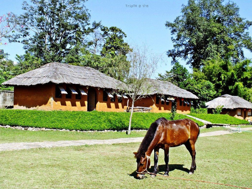 หมู่บ้านสันติชล (3)