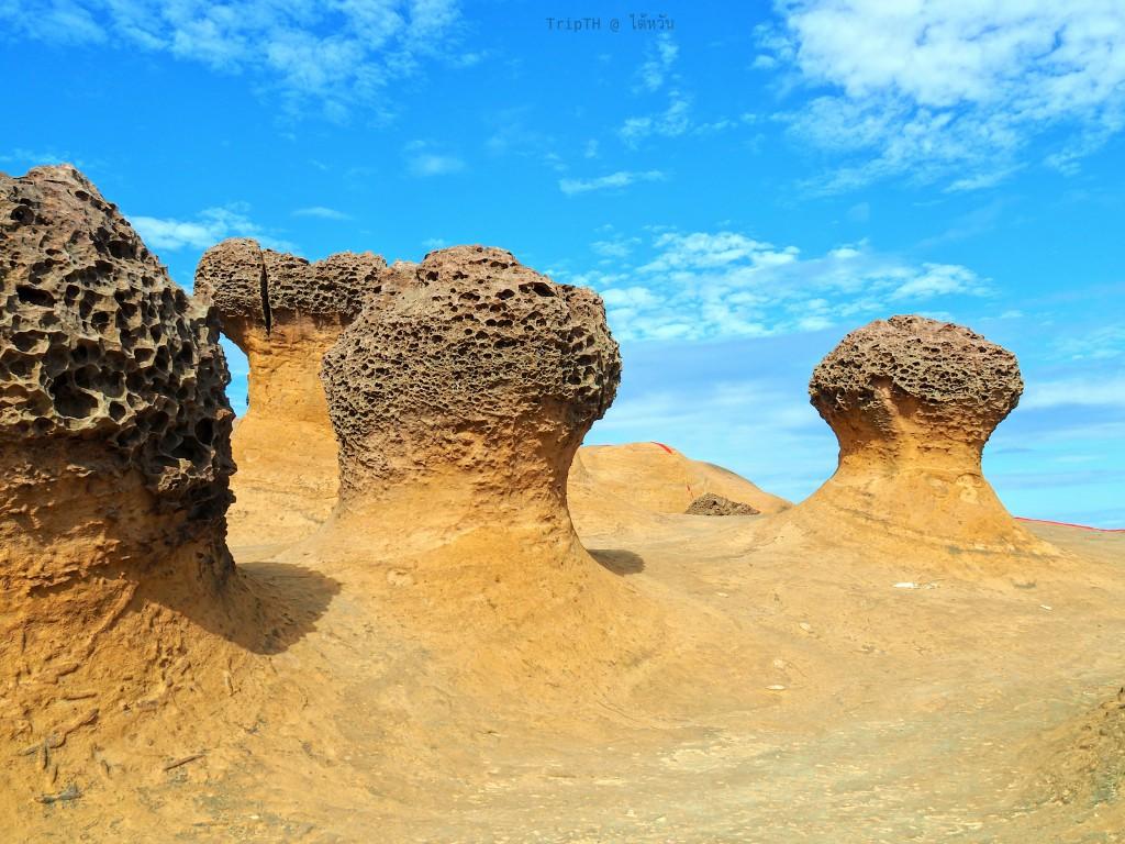 วนอุทยานหินเย่หลิ่ว (5)