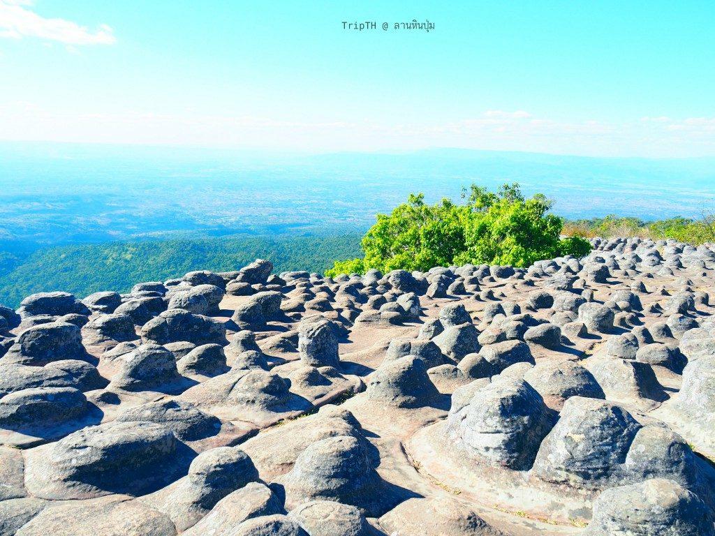 ลานหินปุ่ม (5)