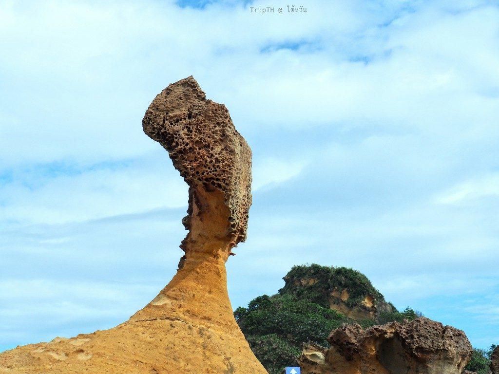 วนอุทยานหินเย่หลิ่ว ไต้หวัน (1)