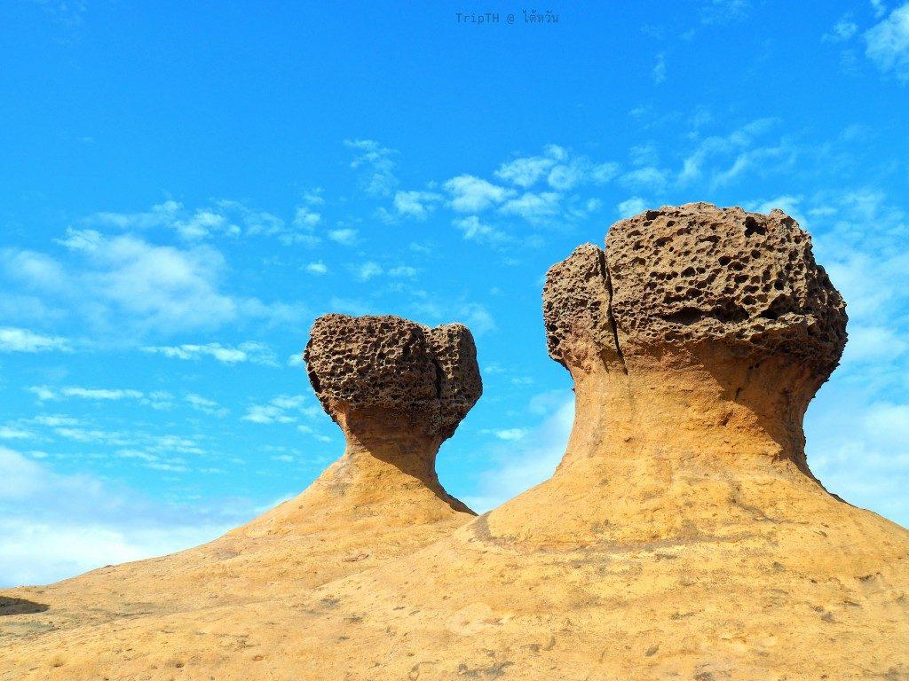 วนอุทยานหินเย่หลิ่ว ไต้หวัน (3)
