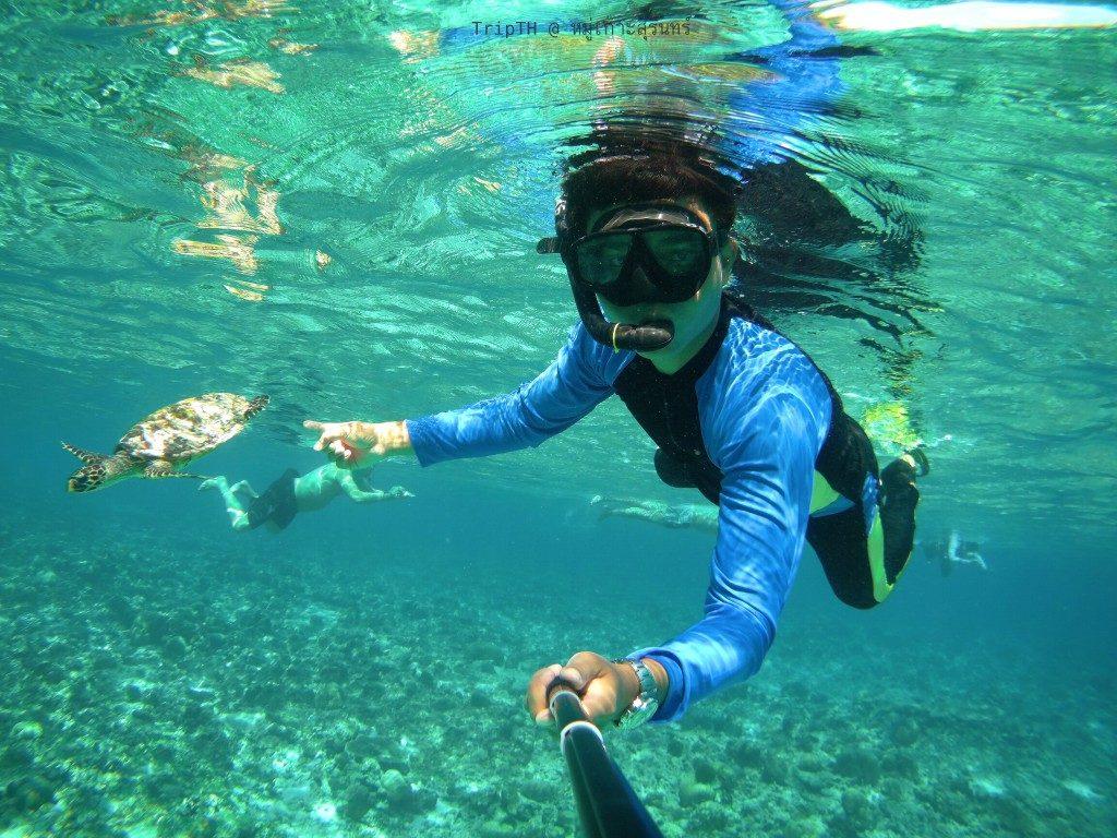 เกาะตอริลลา (3)