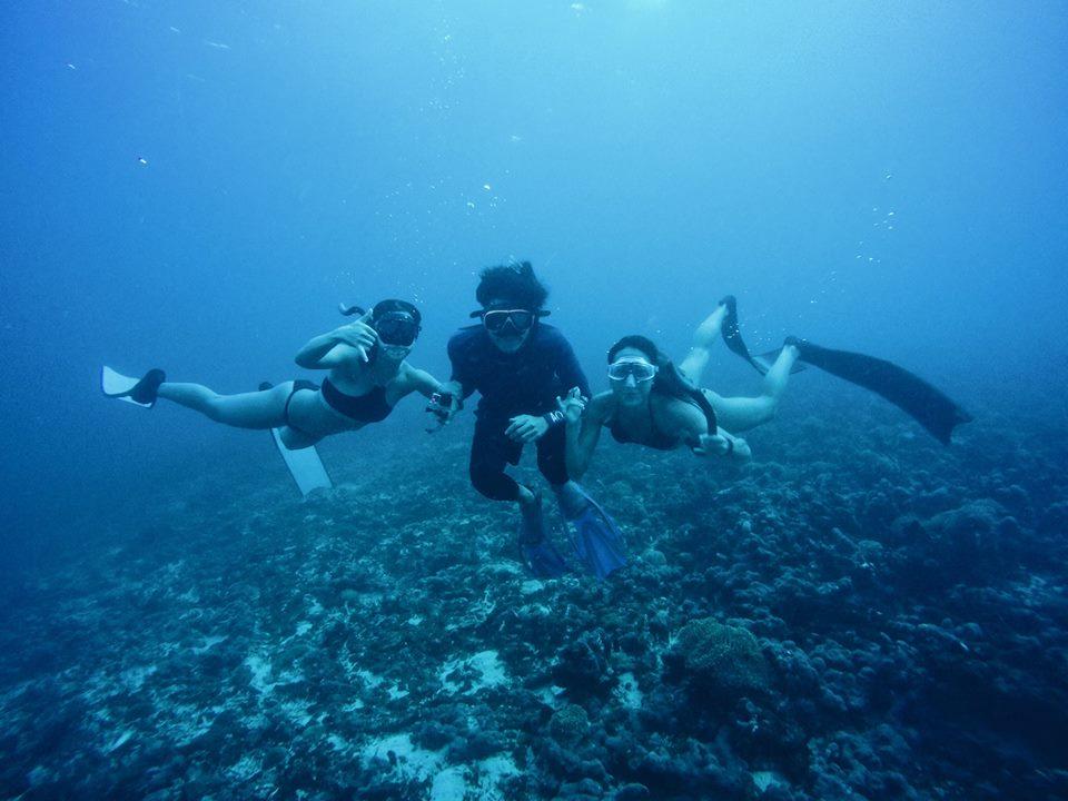 ชักภาพใต้น้ำเป็นที่ระทึกซะหน่อย