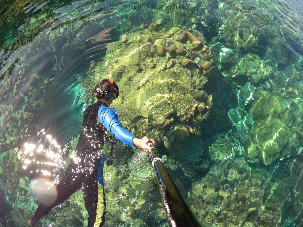 ดำน้ำ อ่าวเต่า (1)