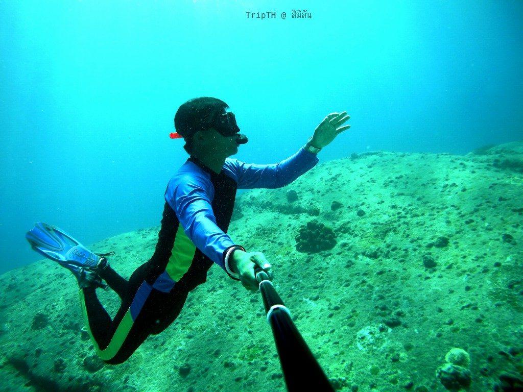 ดำน้ำ เกาะ 8 เกาะสิมิลัน (1)