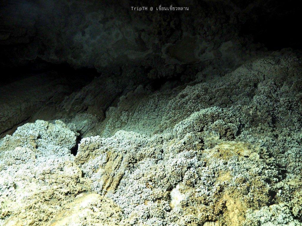 ถ้ำปะการัง (3)