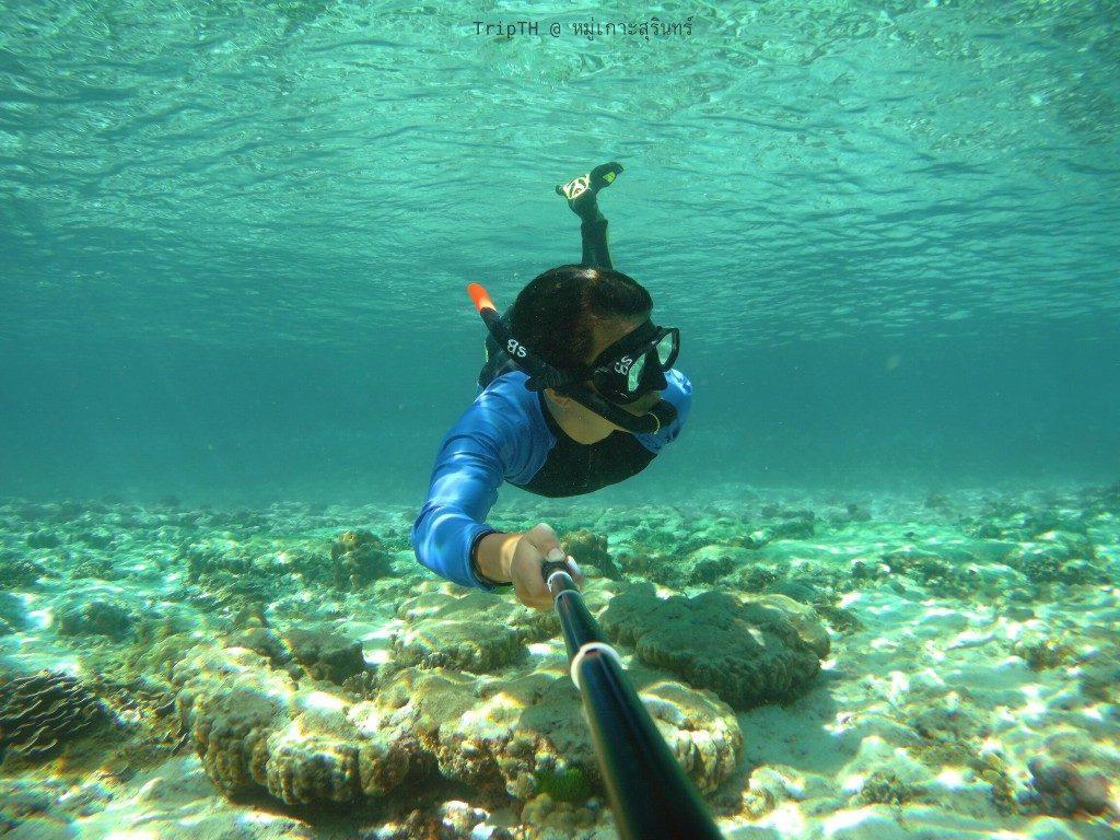 เกาะตอริลลา (1)