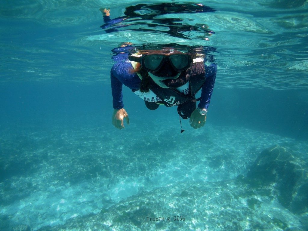 เกาะ 9 หมู่เกาะสิมิลัน (4)