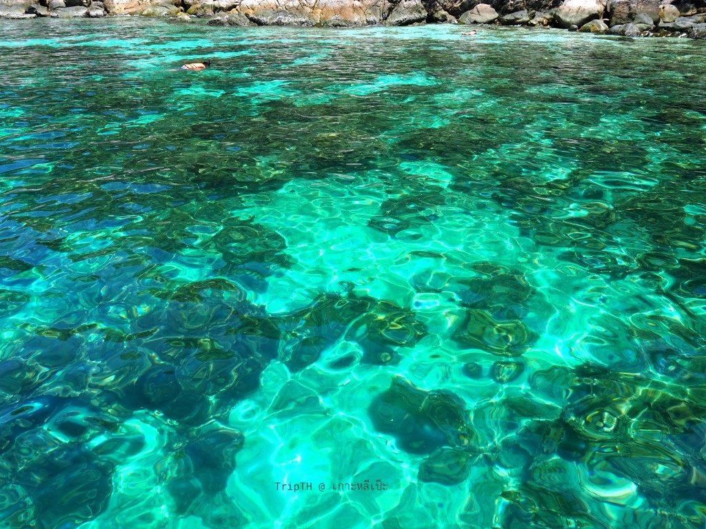 เกาะยาง (2)