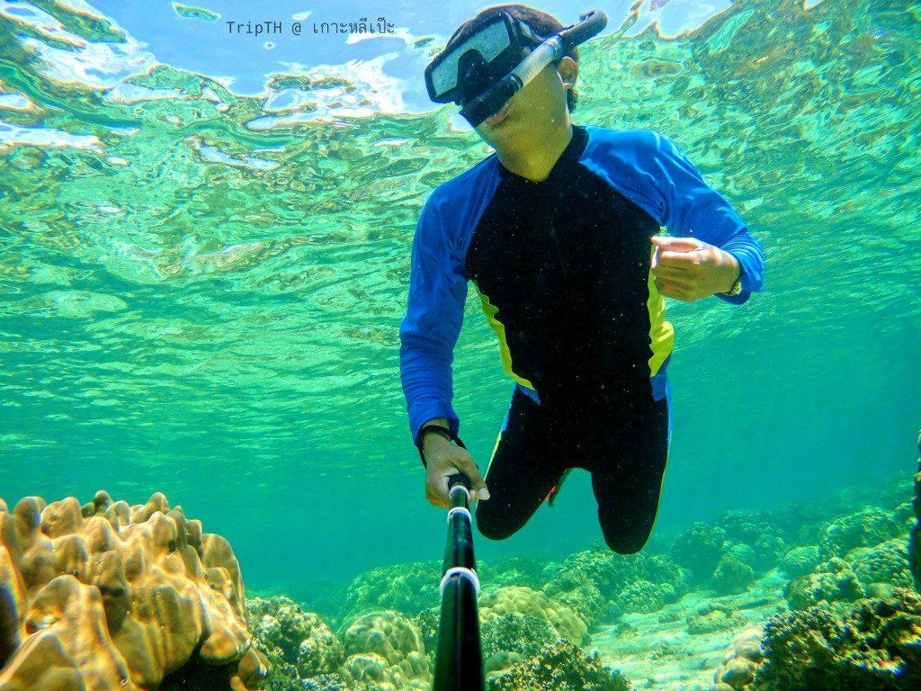ดำน้ำเกาะหินงาม (4)