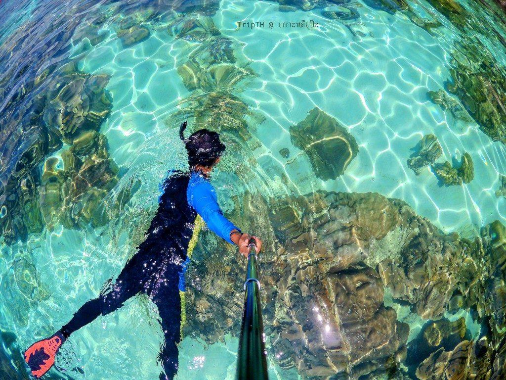ดำน้ำ เกาะยาง (1)