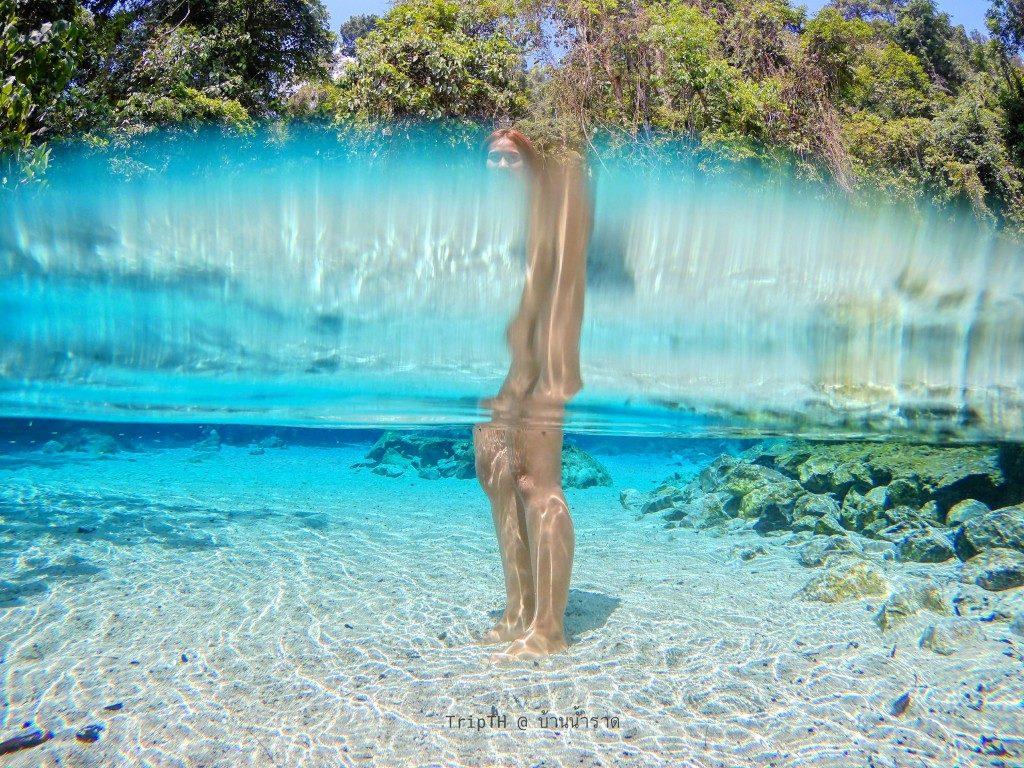 น้ำใสๆ ป่าต้นน้ำ (3)