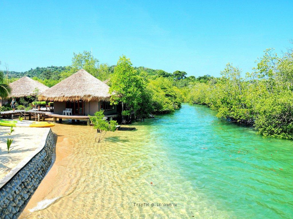 บลูสกาย เกาะพยาม (2)