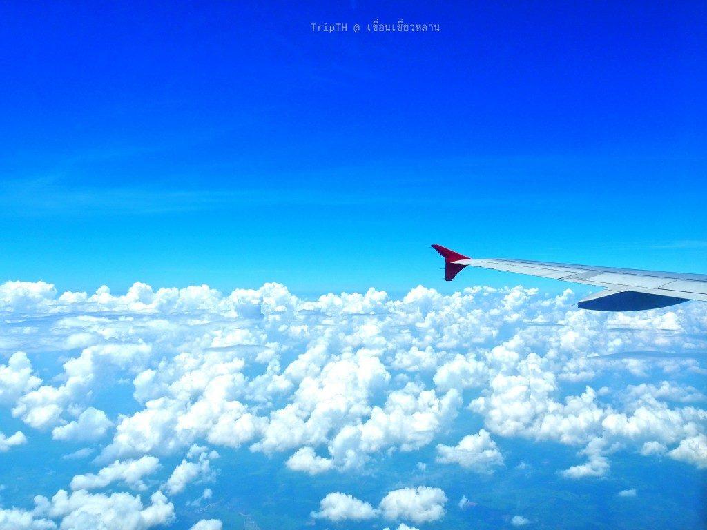 บินไป กทม. สุราษฎร์ธานี (2)