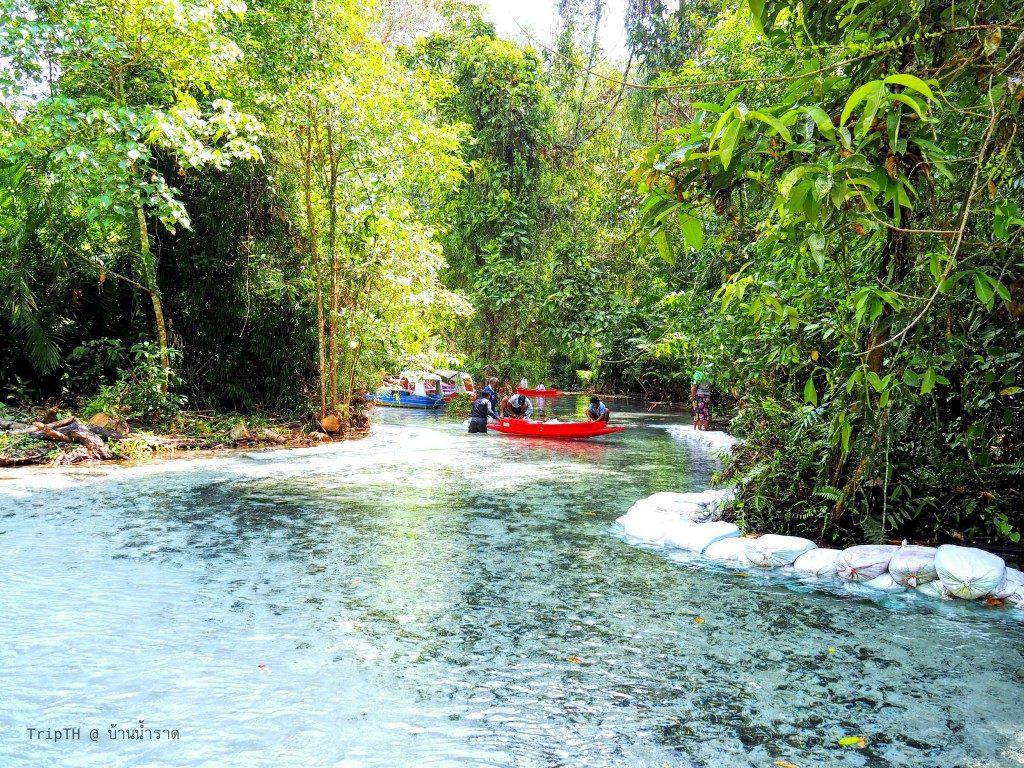 ป่าต้นน้ำ บ้านน้ำราด (3)