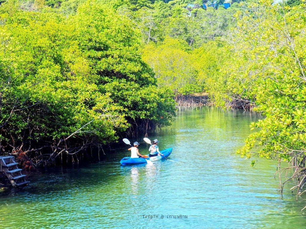 พายเรือคายัค เกาะพยาม (2)