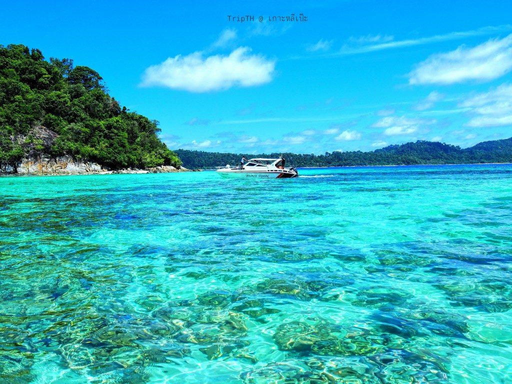 เกาะรอกลอย (5)