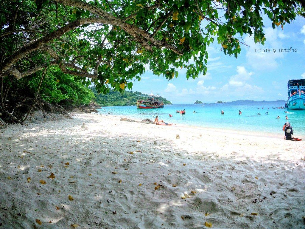 หาดศาลเจ้า (3)