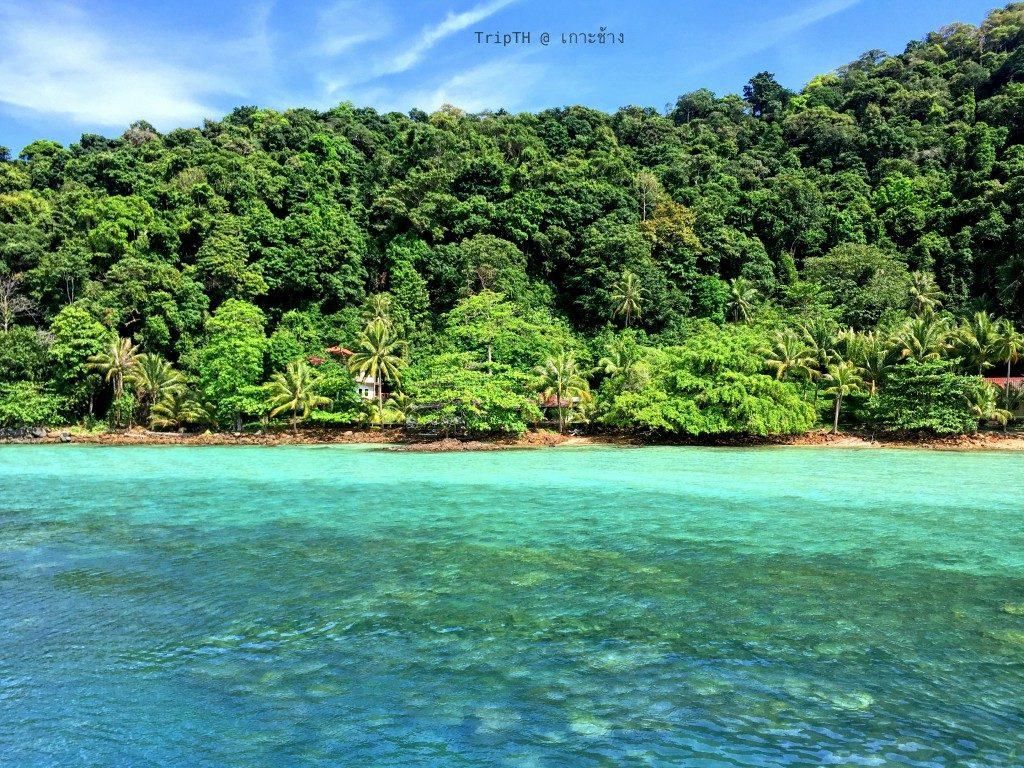 เกาะหวาย (6)
