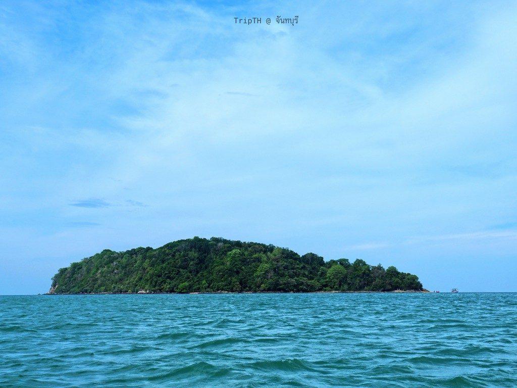 เที่ยวเกาะกวาง (2)