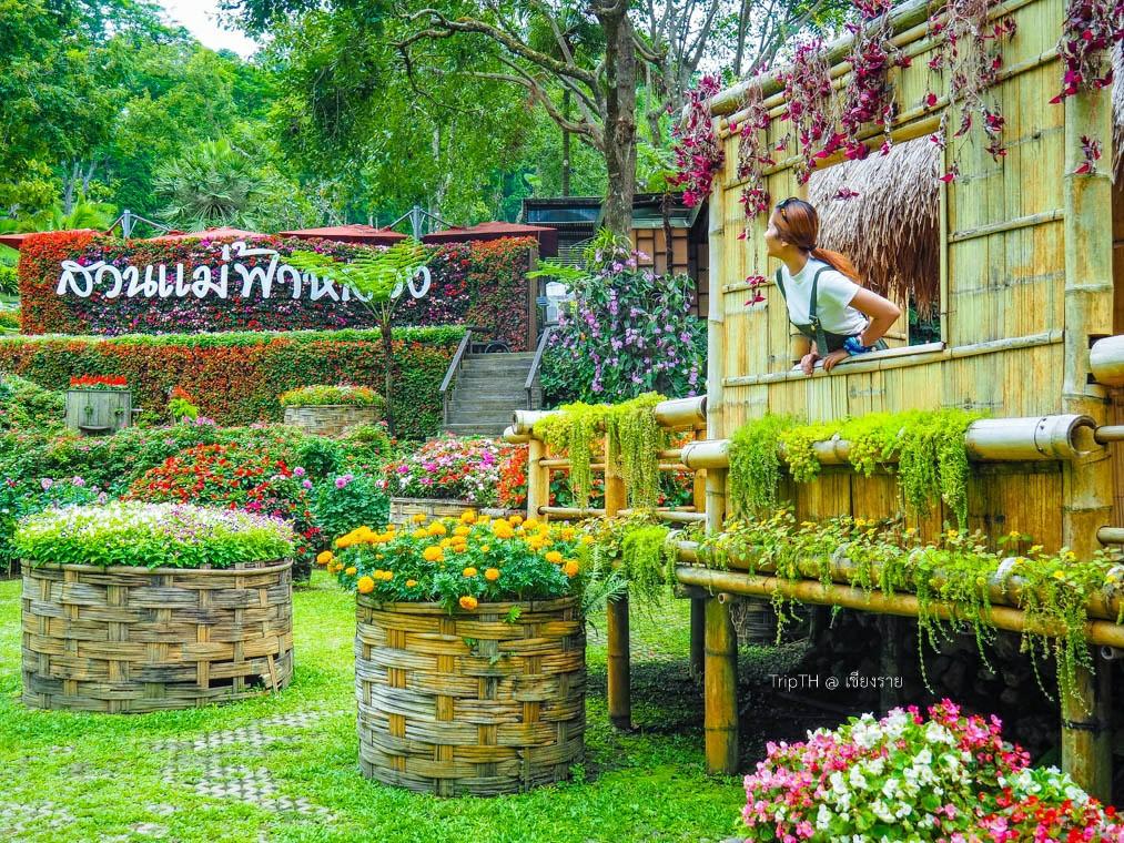 สวนแม่ฟ้าหลวง ดอยตุง (1)