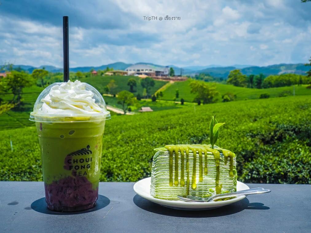 ไร่ชาฉุยฟง เชียงราย (6) | TripTH | ทริปไทยแลนด์