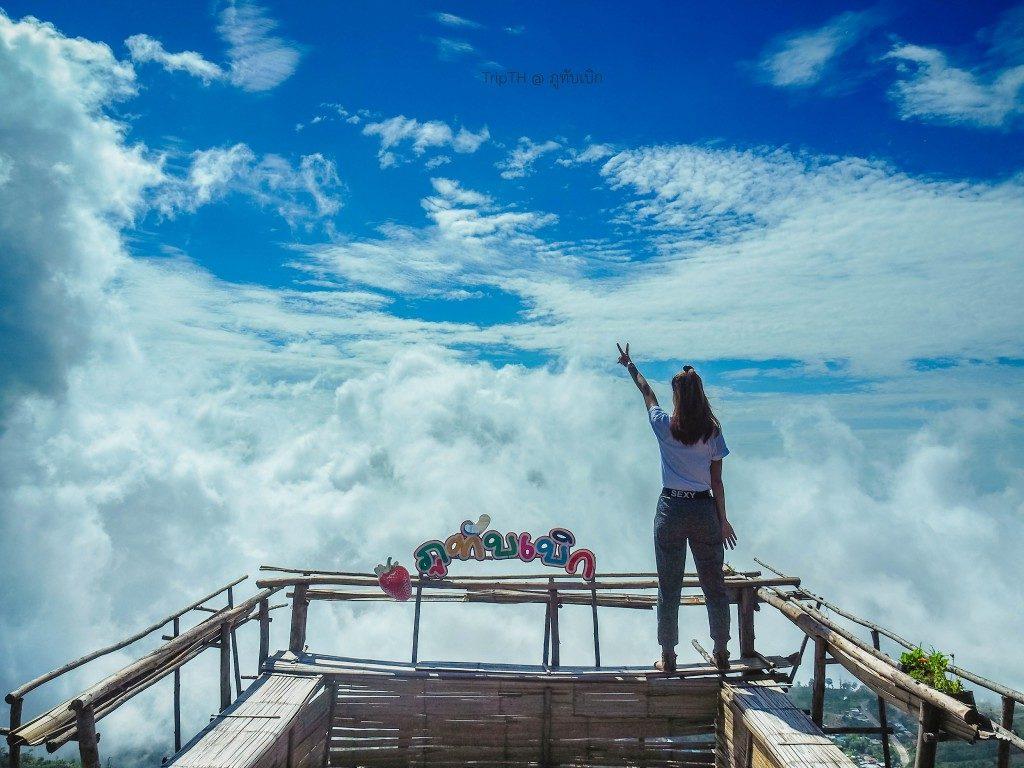 ทะเลหมอก ภูทับเบิก (3)