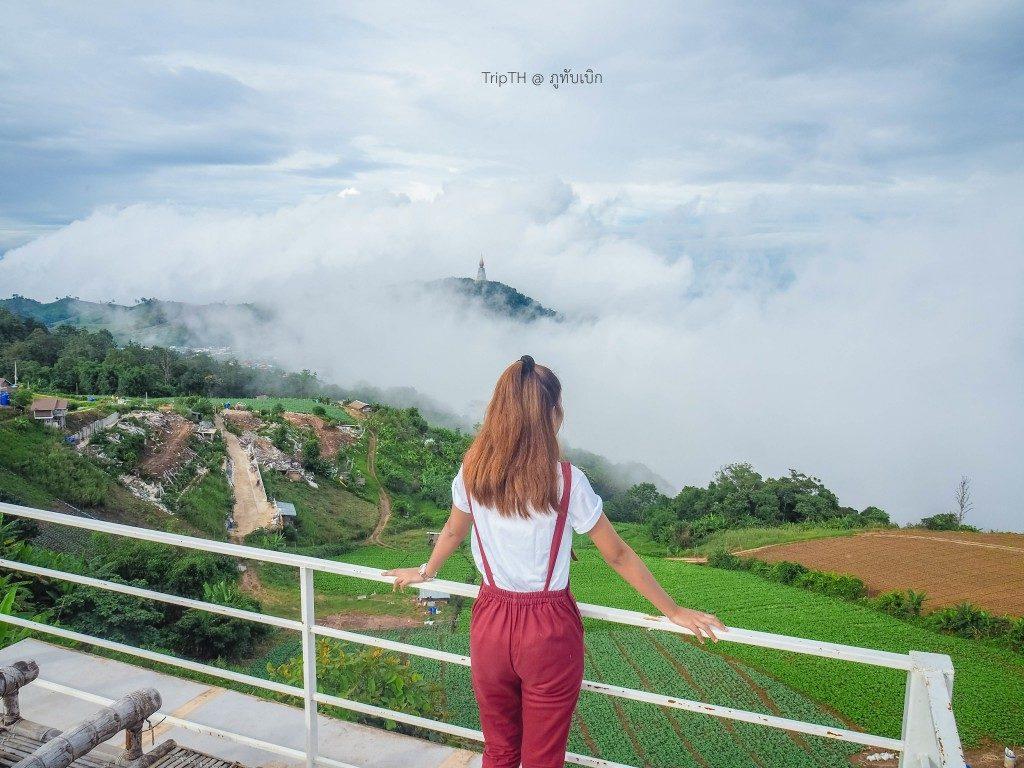 วิมานหมอก ภูทับเบิก ดาดฟ้า (2)