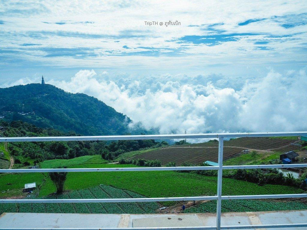 วิมานหมอก ภูทับเบิก ดาดฟ้า (3)