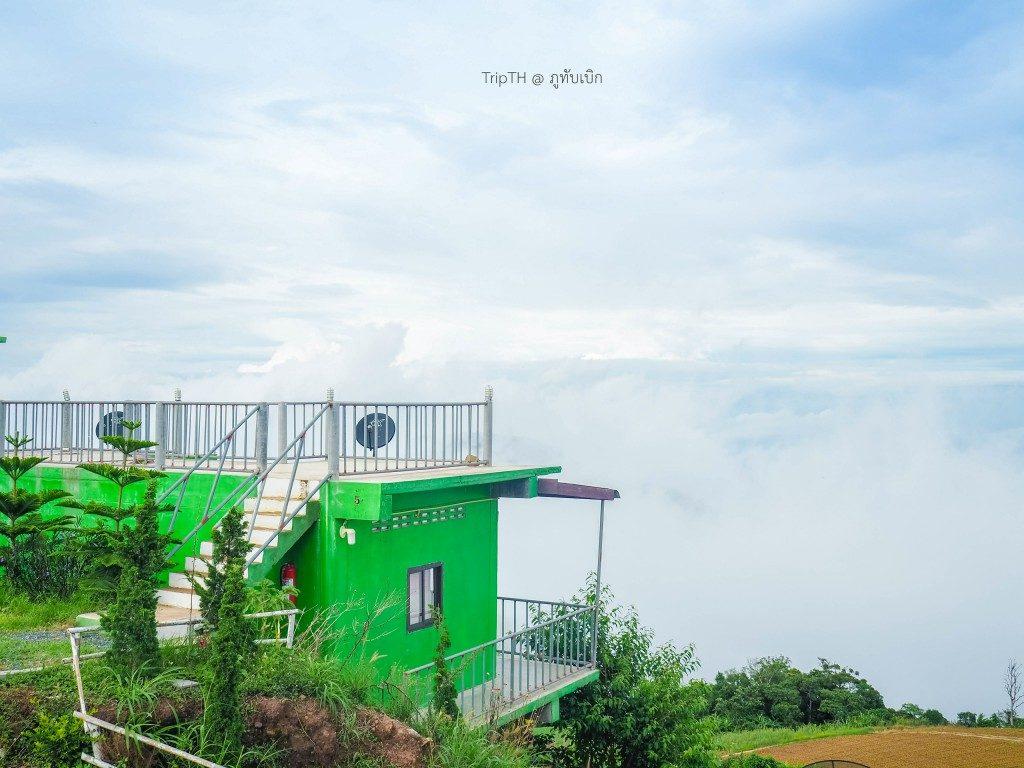 วิมานหมอก ภูทับเบิก (1)