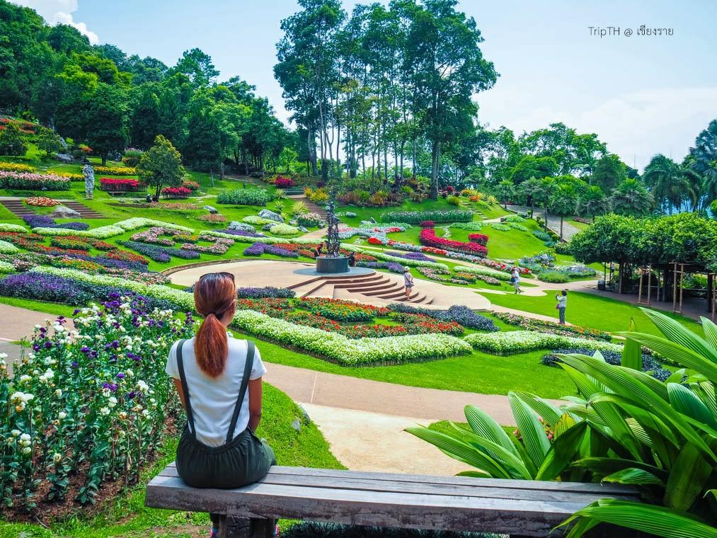 สวนแม่ฟ้าหลวง ดอยตุง (4)
