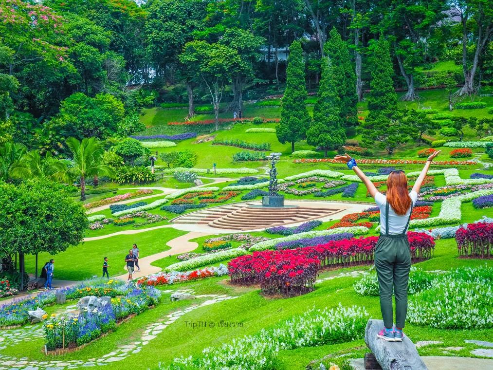สวนแม่ฟ้าหลวง ดอยตุง (5)