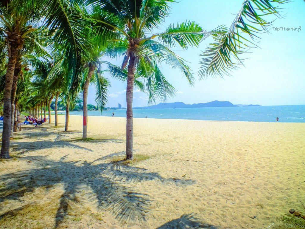 หาดบ้านอำเภอ (2)