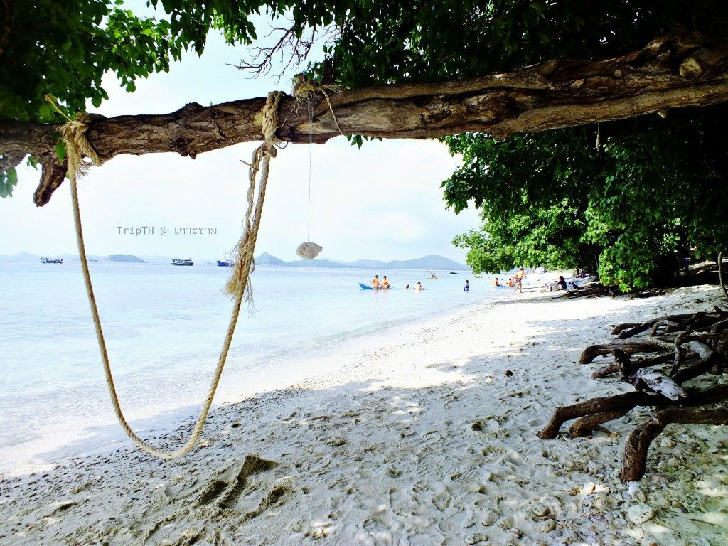 เกาะขาม (2)