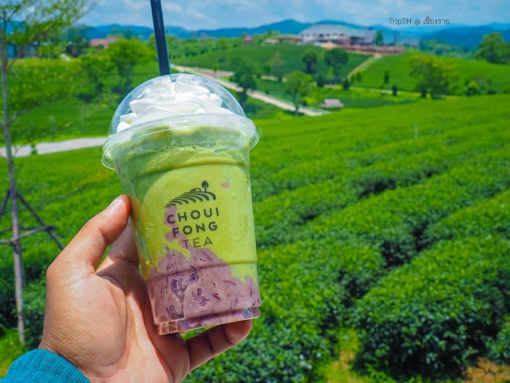 ไร่ชาฉุยฟง เชียงราย (4)
