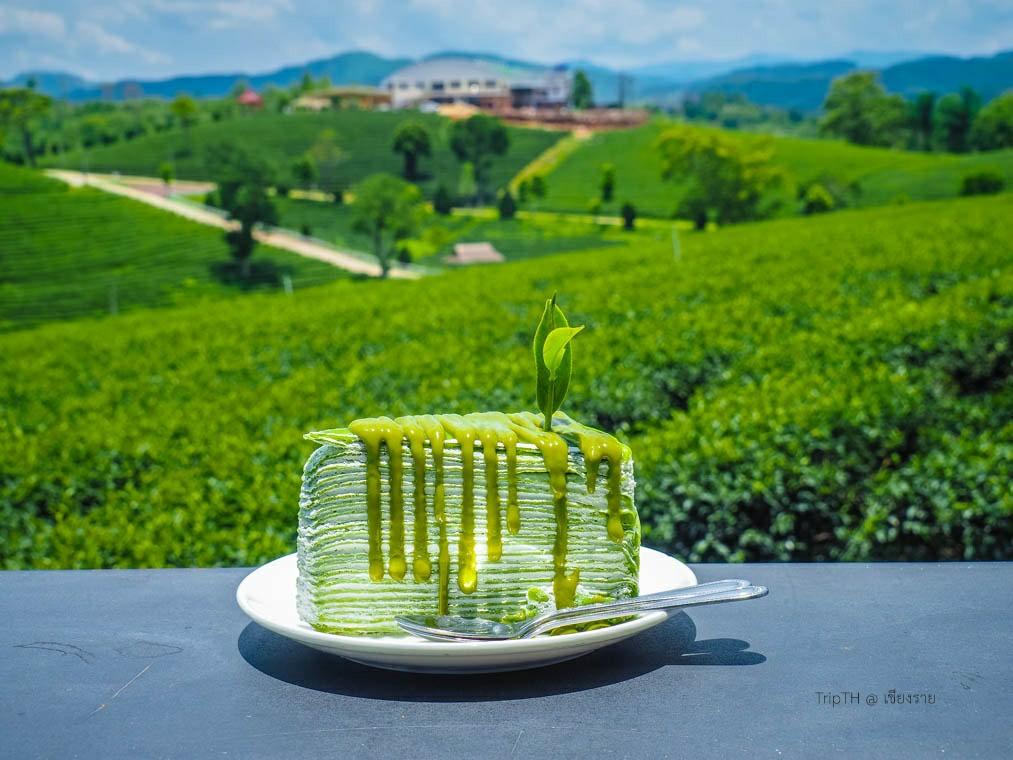 ไร่ชาฉุยฟง เชียงราย (5)