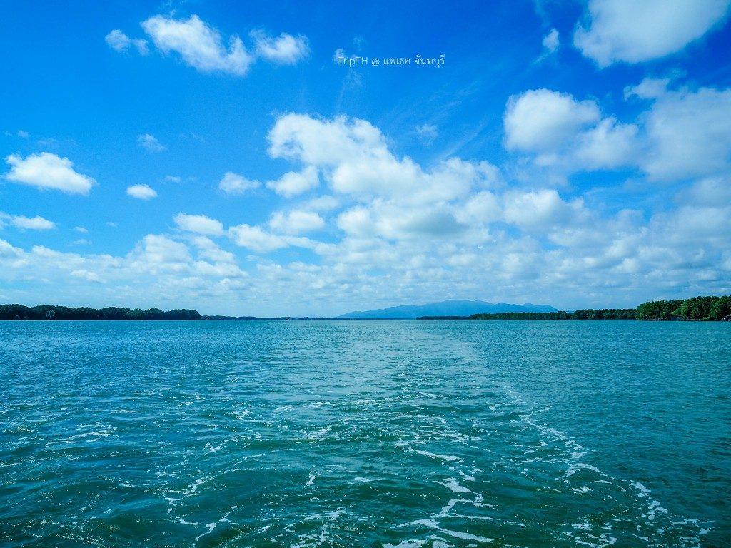 แม่น้ำเวฬุ (1)