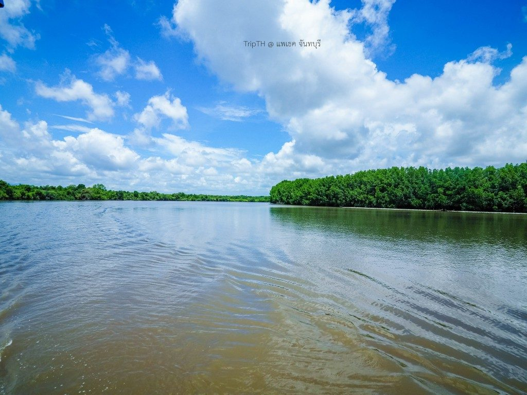 แม่น้ำเวฬุ (2)
