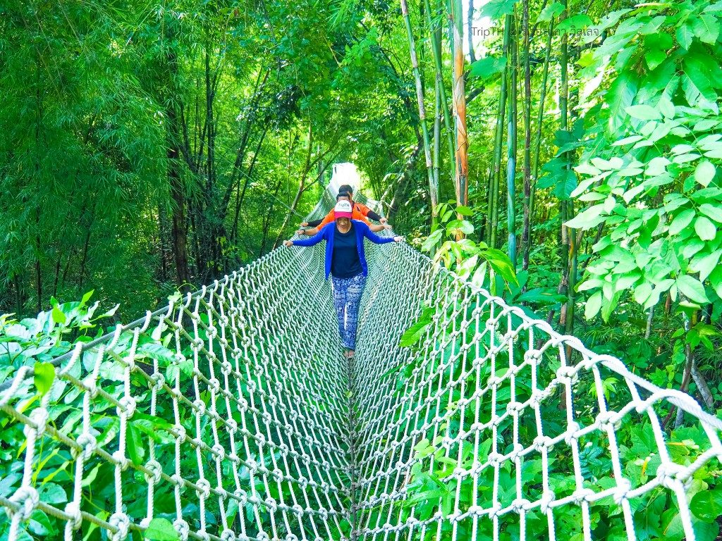Rope Bridge (2)