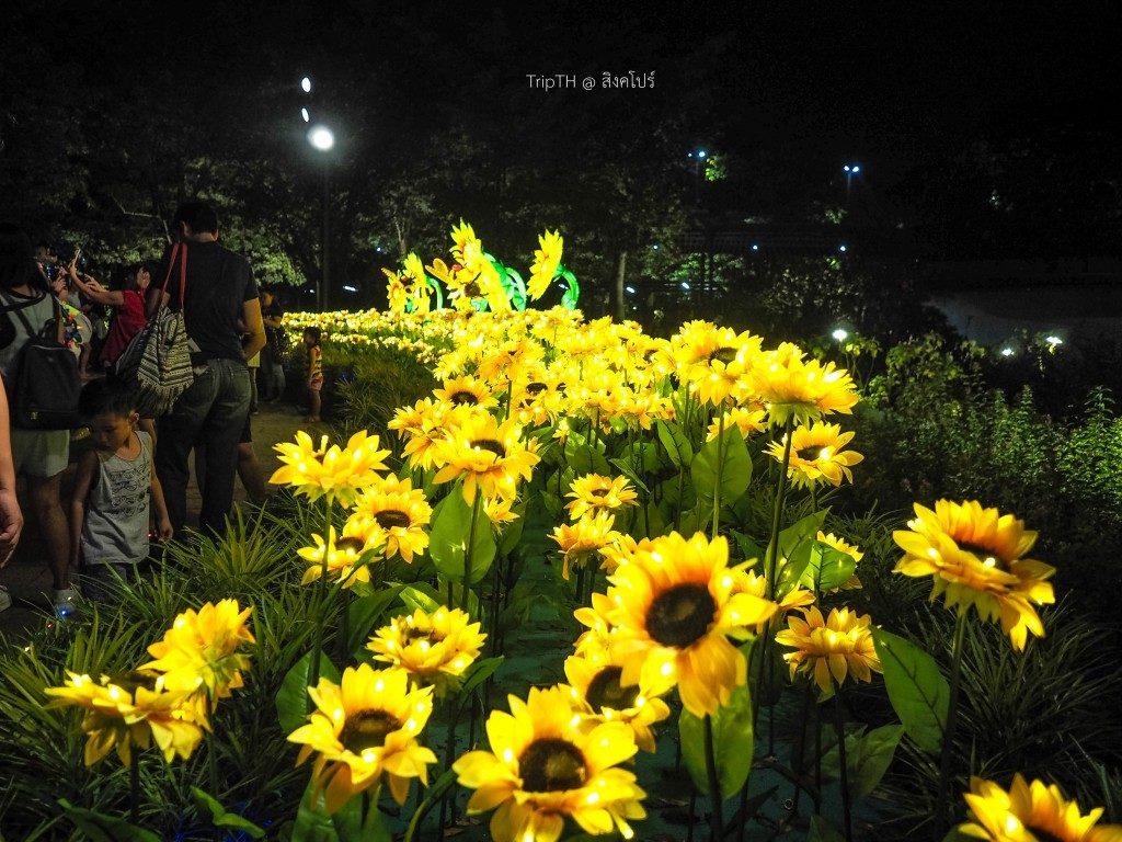 การ์เด้น บาย เดอะ เบย์ (Garden by the bay) (2)