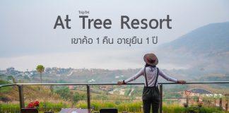 At Tree Resort