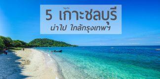 5 เกาะชลบุรี เว็บ